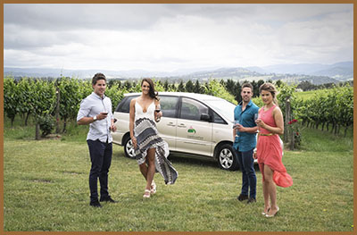 Best Yarra Valley Wine Tour
